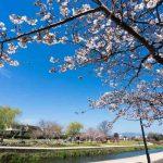 福岡|TOEIC対策スクール講座6選と点数UPの勉強法|社会人・学生向け